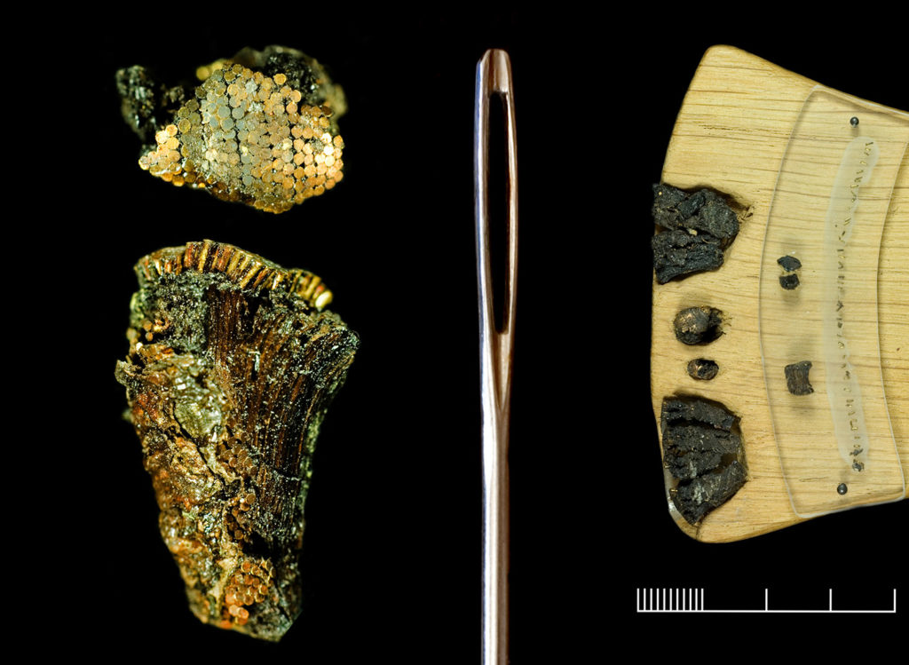 Fragments of the Bush Barrow dagger shown alongside a needle to demonstrate how tiny the studs are.