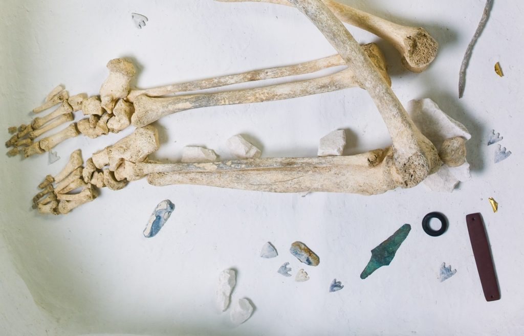 Detail of the Amesbury Archer burial showing arrowheadf scattered around the skeleton.
