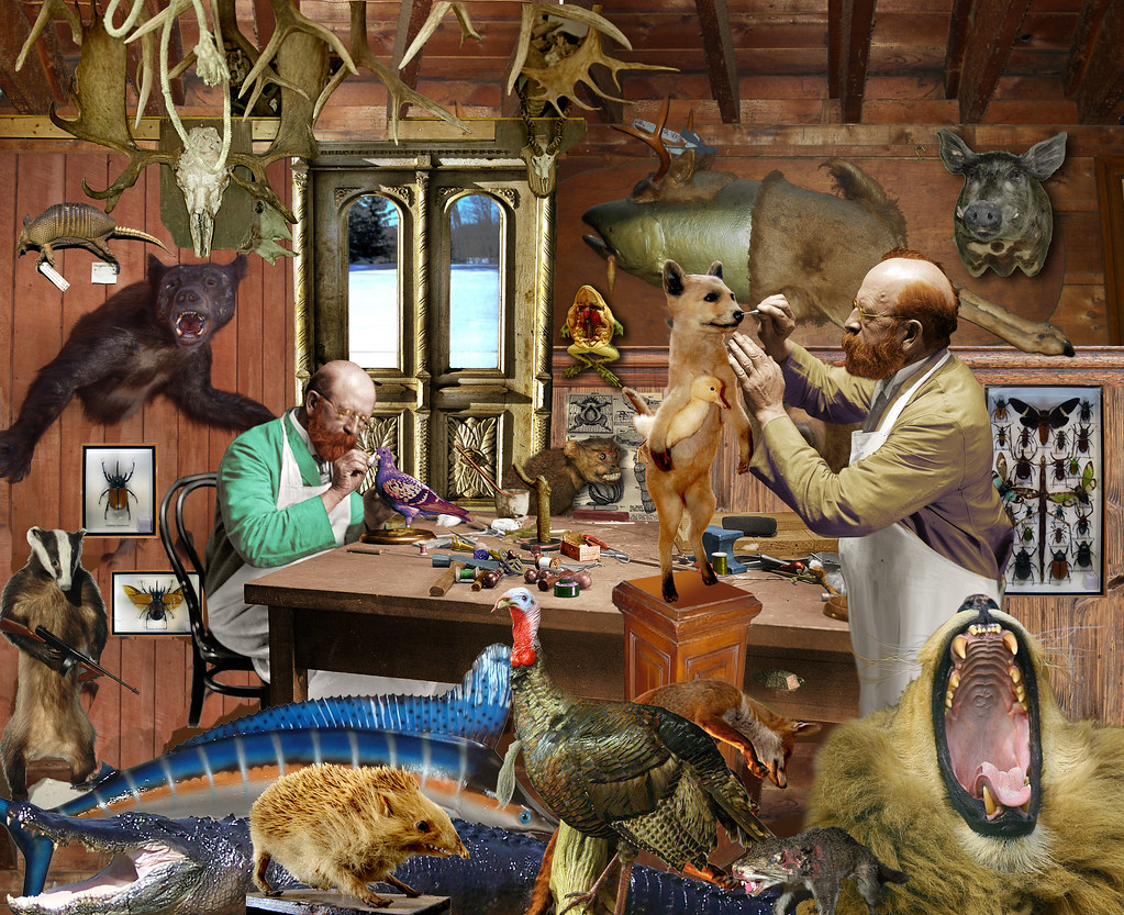 Two taxidermists at work