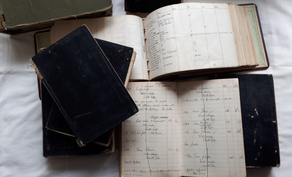 Notebooks of Donald Grose